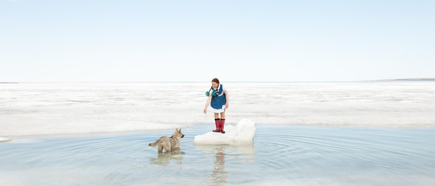 Arktiske historier