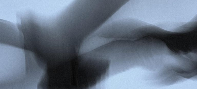 Lars Andreas Dybvik: Dør fisk, dør fugl, dør furu