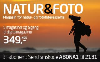 Natur & Foto