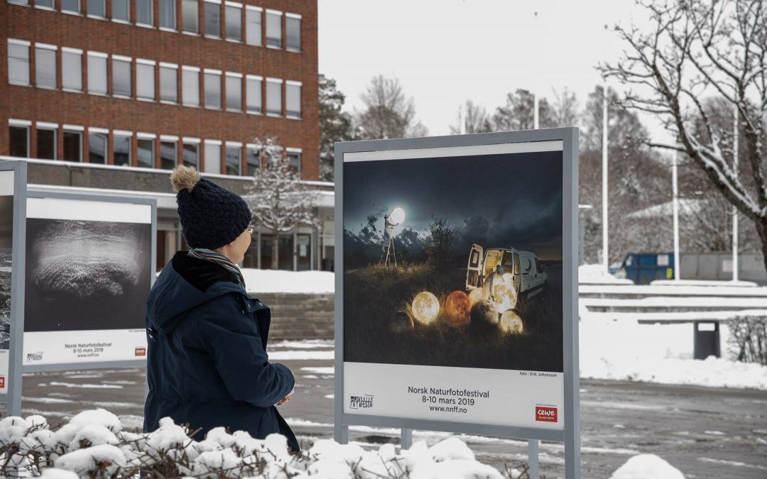 Fra utstillinger under Norsk naturfotofestival