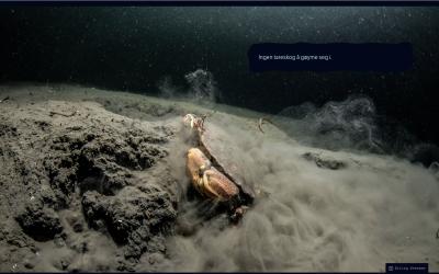 Blålys for havet — viktig tema i artikkel på nrk.no